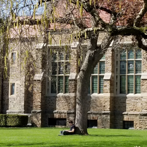 Student sitting under tree by CJ in Hamilton College